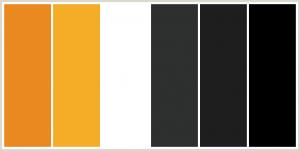 Siyah Beyaz Mutfak Dolabı İle Uyumlu Renkler