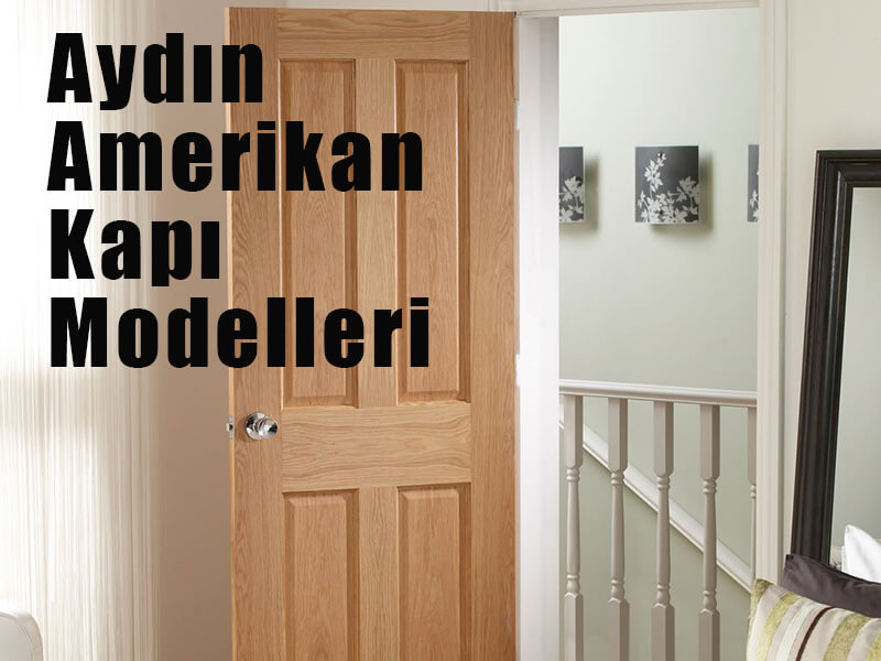 aydın oda kapısı modelleri