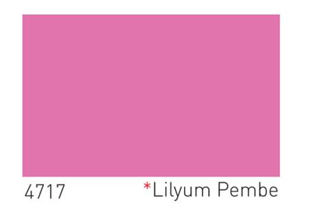 Dyo Lilyum Pembe Rengi